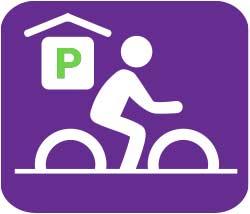 Biking in Ann Arbor